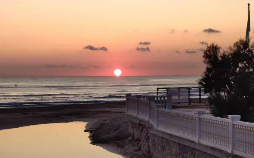 Adquirir una vivienda en Oliva: las opciones